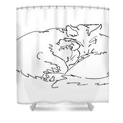 Cat Drawings 2 Shower Curtain