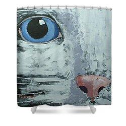 Cat Eye Shower Curtain