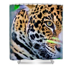 Shower Curtain featuring the painting Cat Eye by Judy Kay