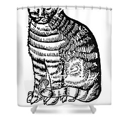 CAT Shower Curtain by Granger