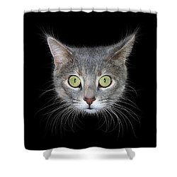 Cat Head On Black Background Shower Curtain