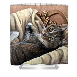 Cat In A Basket Shower Curtain by Susan Jenkins