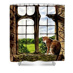 Cat In The Castle Window-close Up Shower Curtain