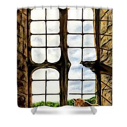 Cat In The Castle Window Shower Curtain