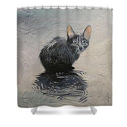 Cat In The Rain Shower Curtain by Jan Szymczuk