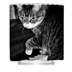 Cat Jammer Shower Curtain