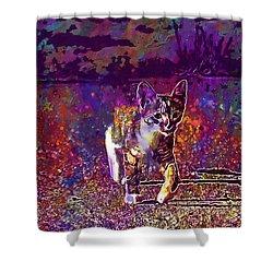 Shower Curtain featuring the digital art Cat Kitten Cat Baby Mackerel  by PixBreak Art