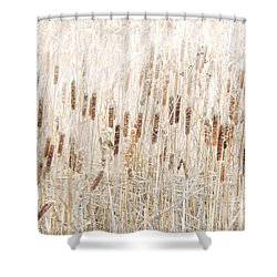 Cat O' Nine Tails Shower Curtain