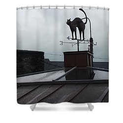Cat On A Cool Tin Roof Shower Curtain