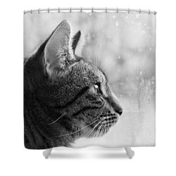Waiting... Shower Curtain