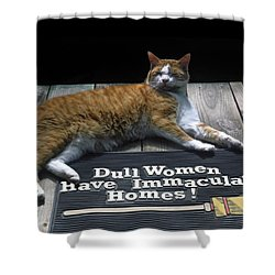 Cat On Dull Women Mat Shower Curtain by Sally Weigand