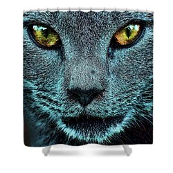 Cat With Golden Eyes Shower Curtain