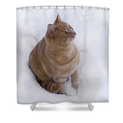 Cat With Snowflakes Shower Curtain