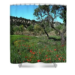 Catalan Countryside In Spring Shower Curtain by Don Pedro De Gracia