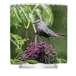 Catbird Shower Curtain