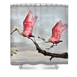 Shower Curtain featuring the photograph Catch Me If You Can by Brian Tarr