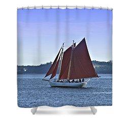 Catch The Breeze Shower Curtain
