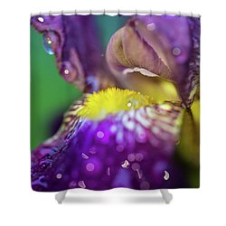 Catching Raindrops  Shower Curtain