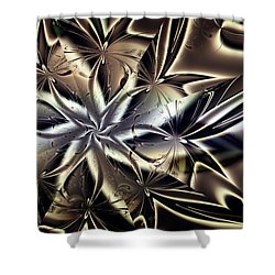 Catching Some Rays Shower Curtain by Jim Pavelle