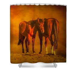 Catching The Last Sun Digital Painting Shower Curtain