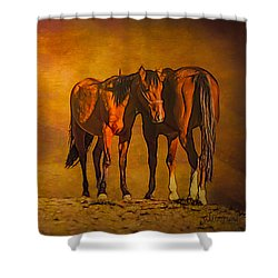 Catching The Last Sun Photoart Shower Curtain
