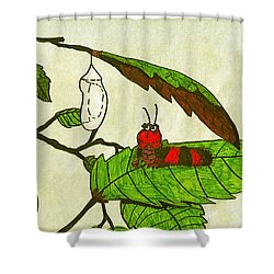 Shower Curtain featuring the drawing Caterpillar Whimsy by Wendy McKennon