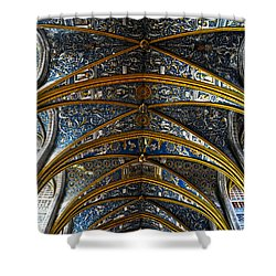 Cathedral Albi Shower Curtain