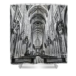Cathedral At Orleans France Shower Curtain