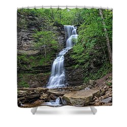 Cathedral Falls Shower Curtain