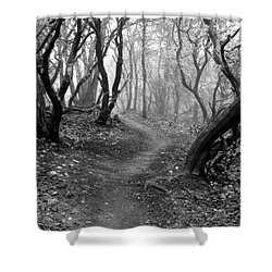 Cathedral Hills Serenity In Black And White Shower Curtain