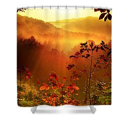 Cathedral Of Light - Special Crop Shower Curtain