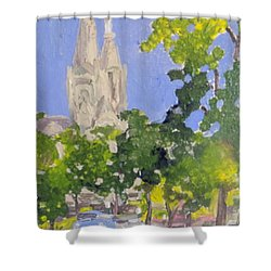 Cathedral Shower Curtain by Rodger Ellingson