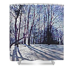 Cathedral Skies Shower Curtain by Margaret Lindsay Holton
