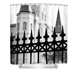 Catheral Basilica Shower Curtain by Scott Pellegrin