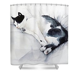 Catnap 1-2 Shower Curtain