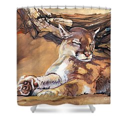 Catnap Shower Curtain by J W Baker