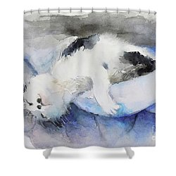 Catnap2-1 Shower Curtain