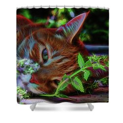 Catnip Chillin Shower Curtain