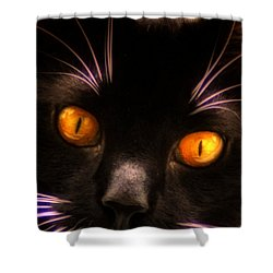 Cats Eyes Shower Curtain by Bill Cannon