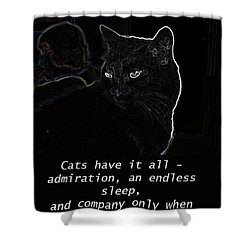 Cats Have It All Shower Curtain by Charles Shoup