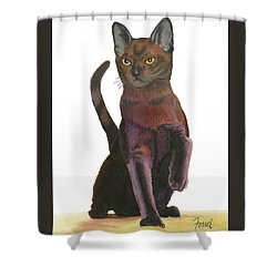 Shower Curtain featuring the painting Cats Meow by Ferrel Cordle