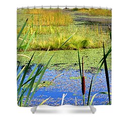 Shower Curtain featuring the photograph Cattail by Chris Anderson