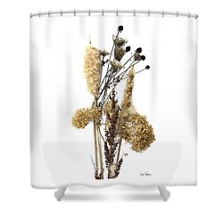 Shower Curtain featuring the digital art Cattails And November Flowers II by Lise Winne