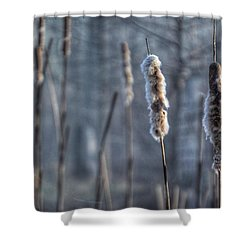 Cattails In The Winter Shower Curtain