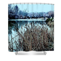 Shower Curtain featuring the photograph Cattails On The Water by Sandy Moulder
