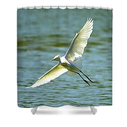 Cattle Egret Right Banking Turn - Digitalart Shower Curtain