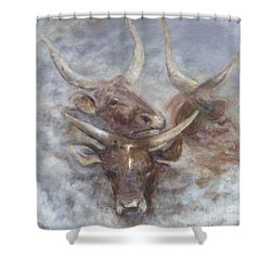 Cattle In The Mist Shower Curtain