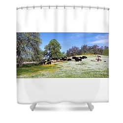 Cattle N Flowers Shower Curtain by Diane Bohna