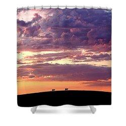 Cattle Ridge Sunset Shower Curtain