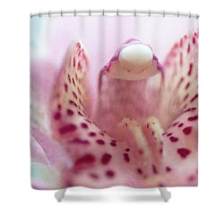 Shower Curtain featuring the photograph Cattleya Orchid Abstract 3 by Jenny Rainbow